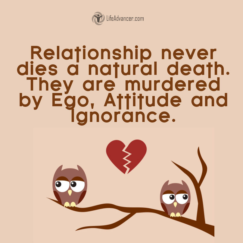 Love Quotes Life Advancer