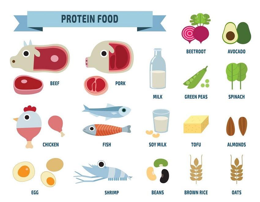 Protein Foods - Collagen best natural sources