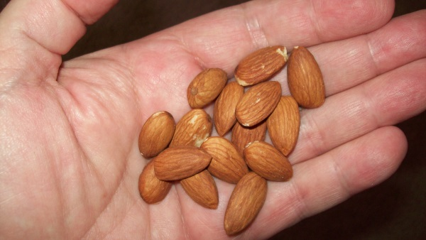 raw_almonds_handful