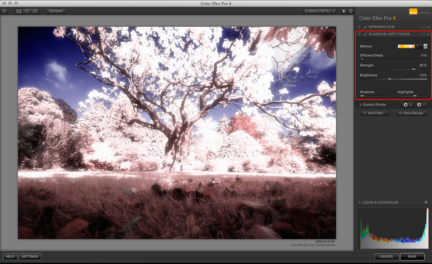 Color Efex Pro Infrared Film effect