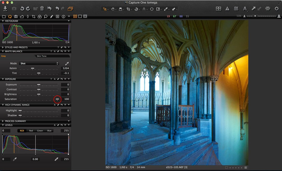 Capture One Colour Boost