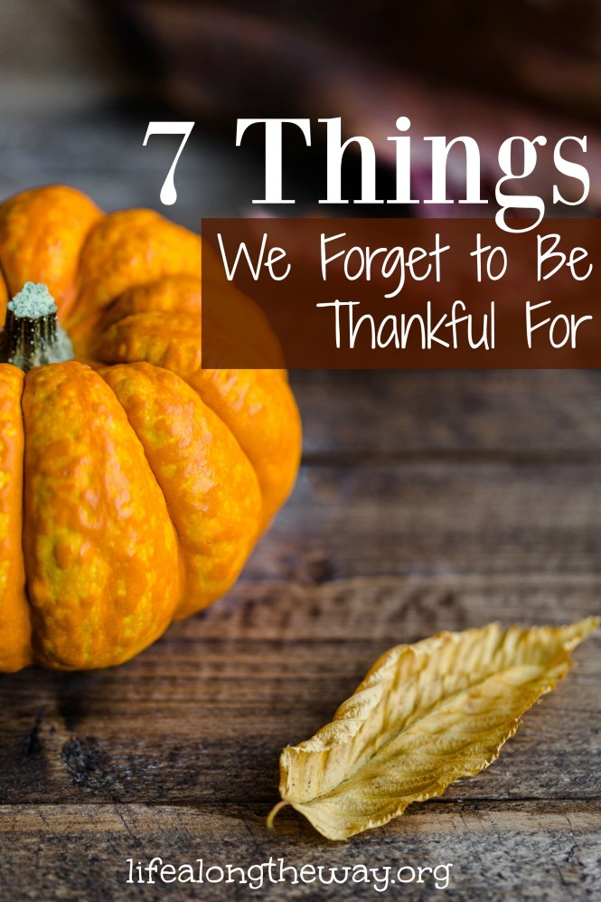 7-things-we-forget-to-be-thankful-for