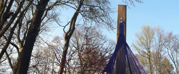 View from a hammock on a beautiful spring day