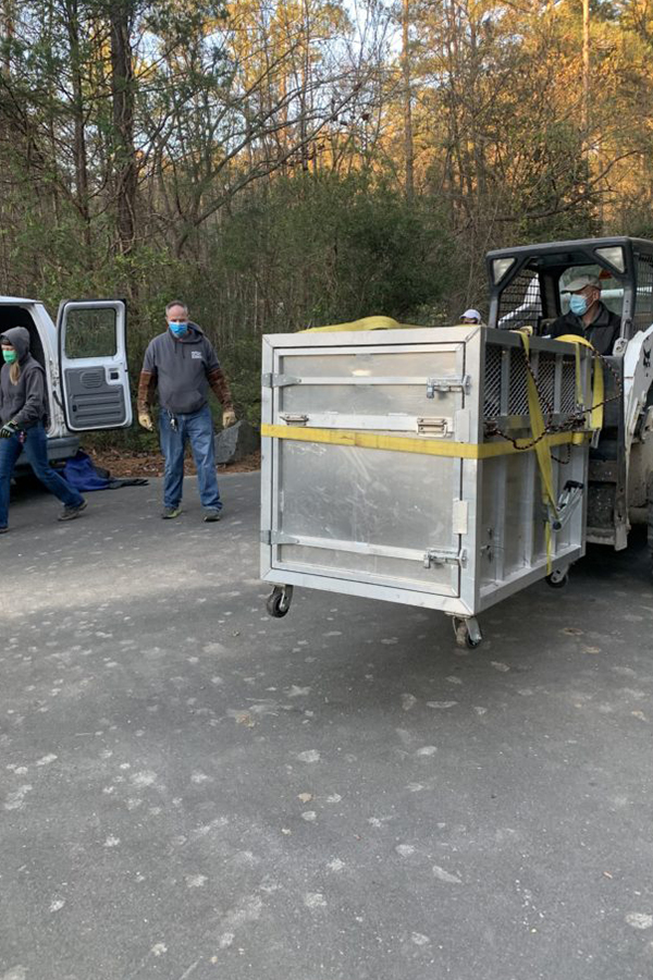 Bear crate being loaded into back of van