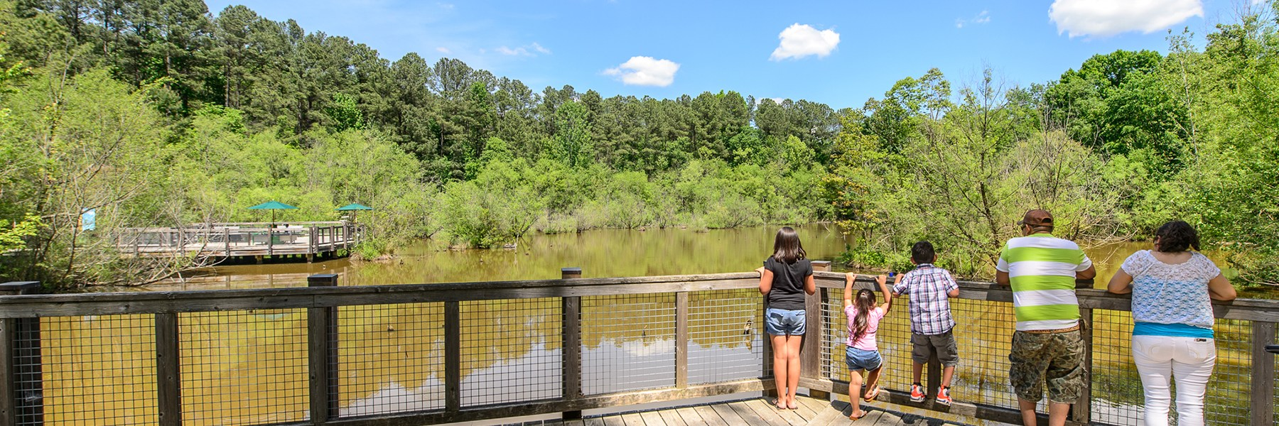 Group of adults and kids stand on Wetland deck looking into water