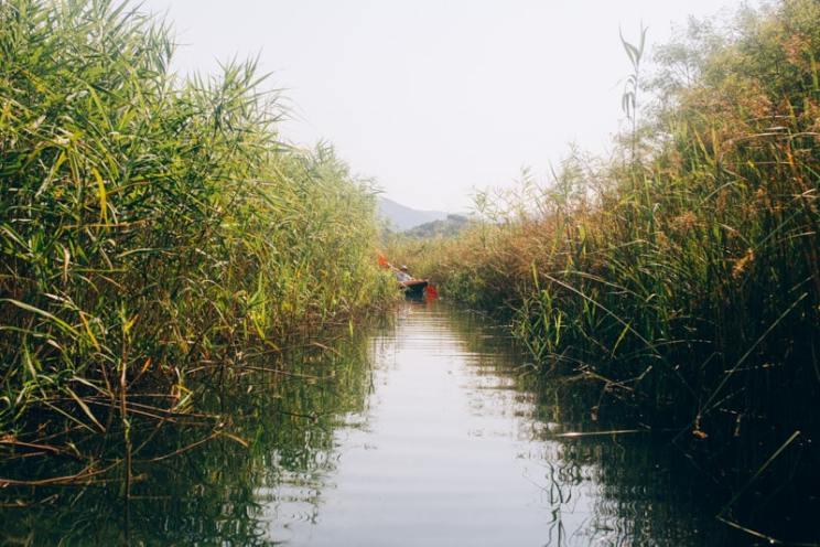 bacina-lakes-nature