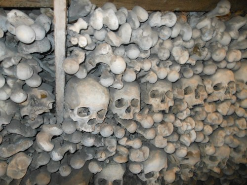 skulls in a church