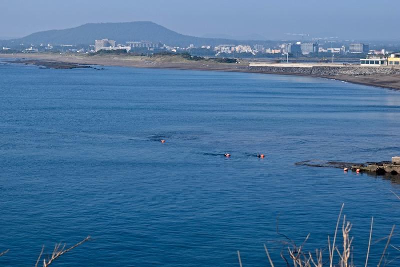 Jeju Island divers