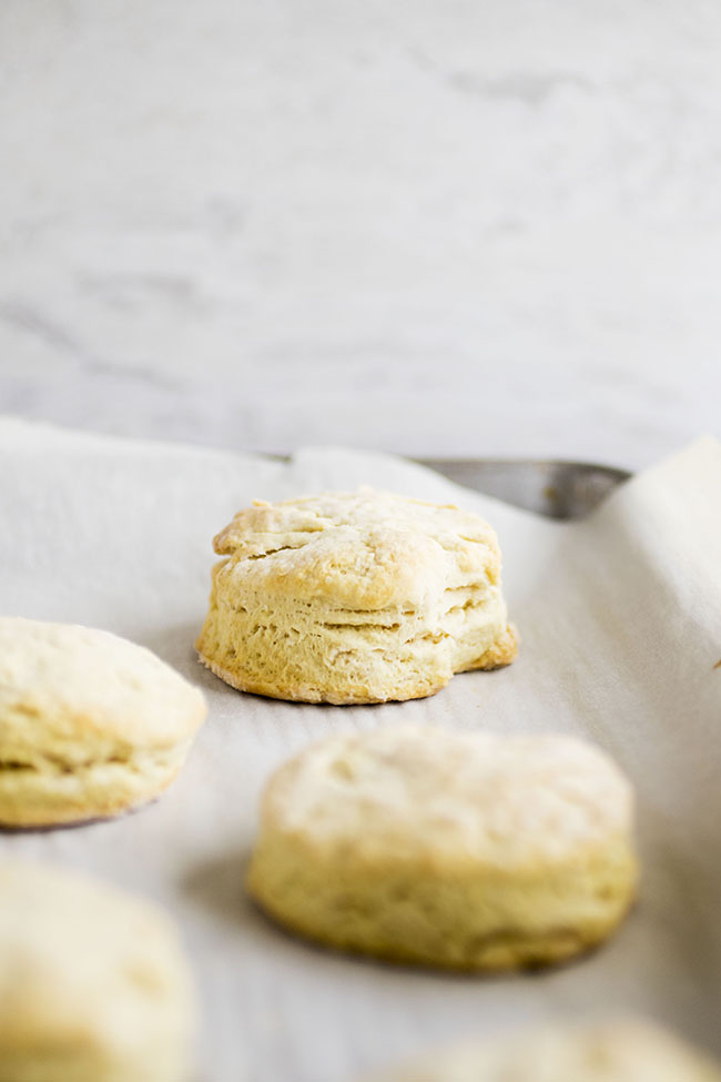 Easy Vegan Biscuits | You'll love this simple, fluffy vegan biscuit recipe - you won't even miss the butter! Great for vegan baking. Vegetarian, Vegan.