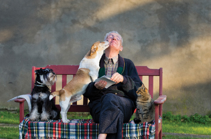 01-when-is-it-ethical-to-euthanise-your-pet