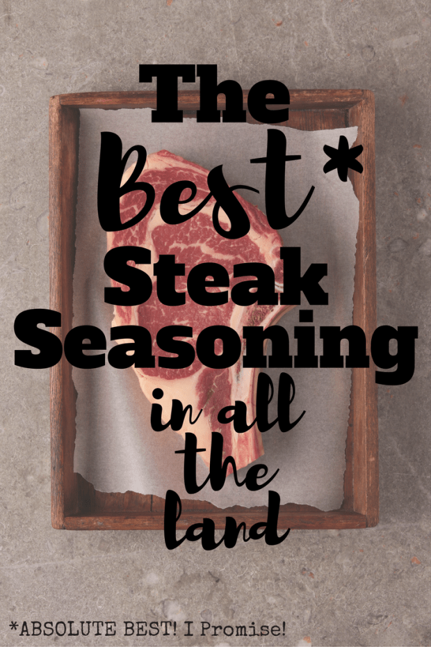 The BEST Steak Seasoning in All The Land