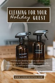 Cleaning Hacks Holiday1