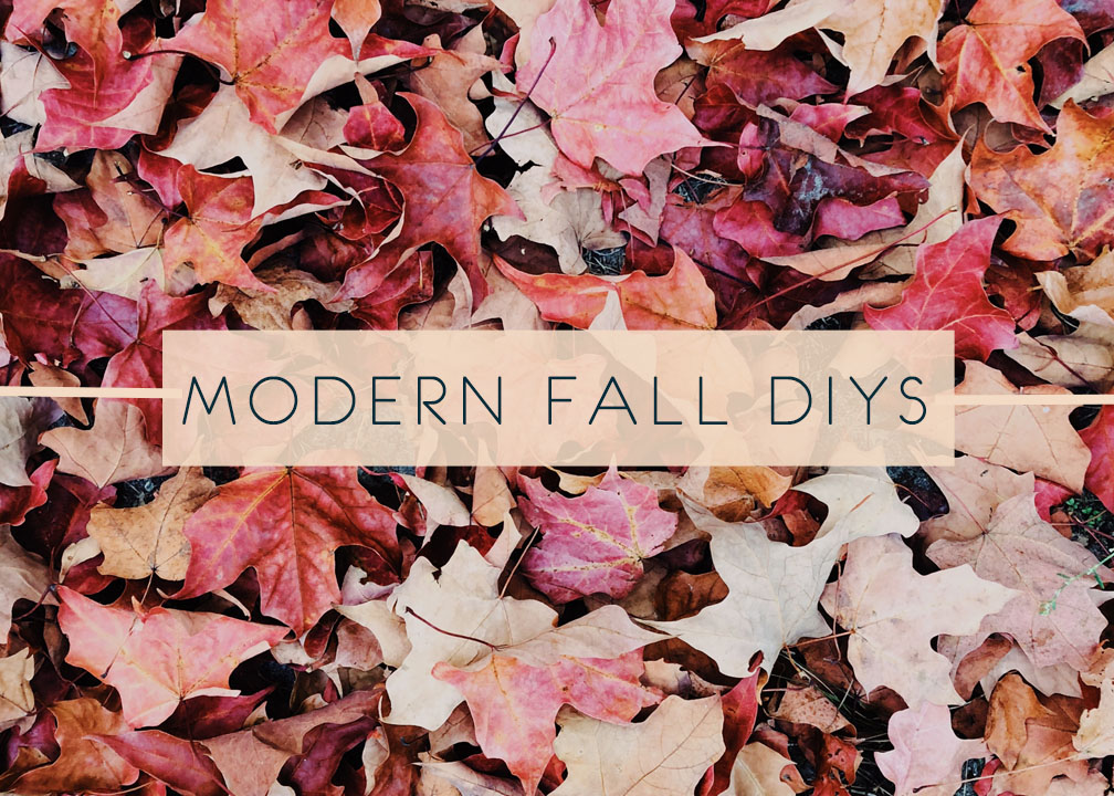 6 DIY Ideas That Are Perfect for the Fall Season!