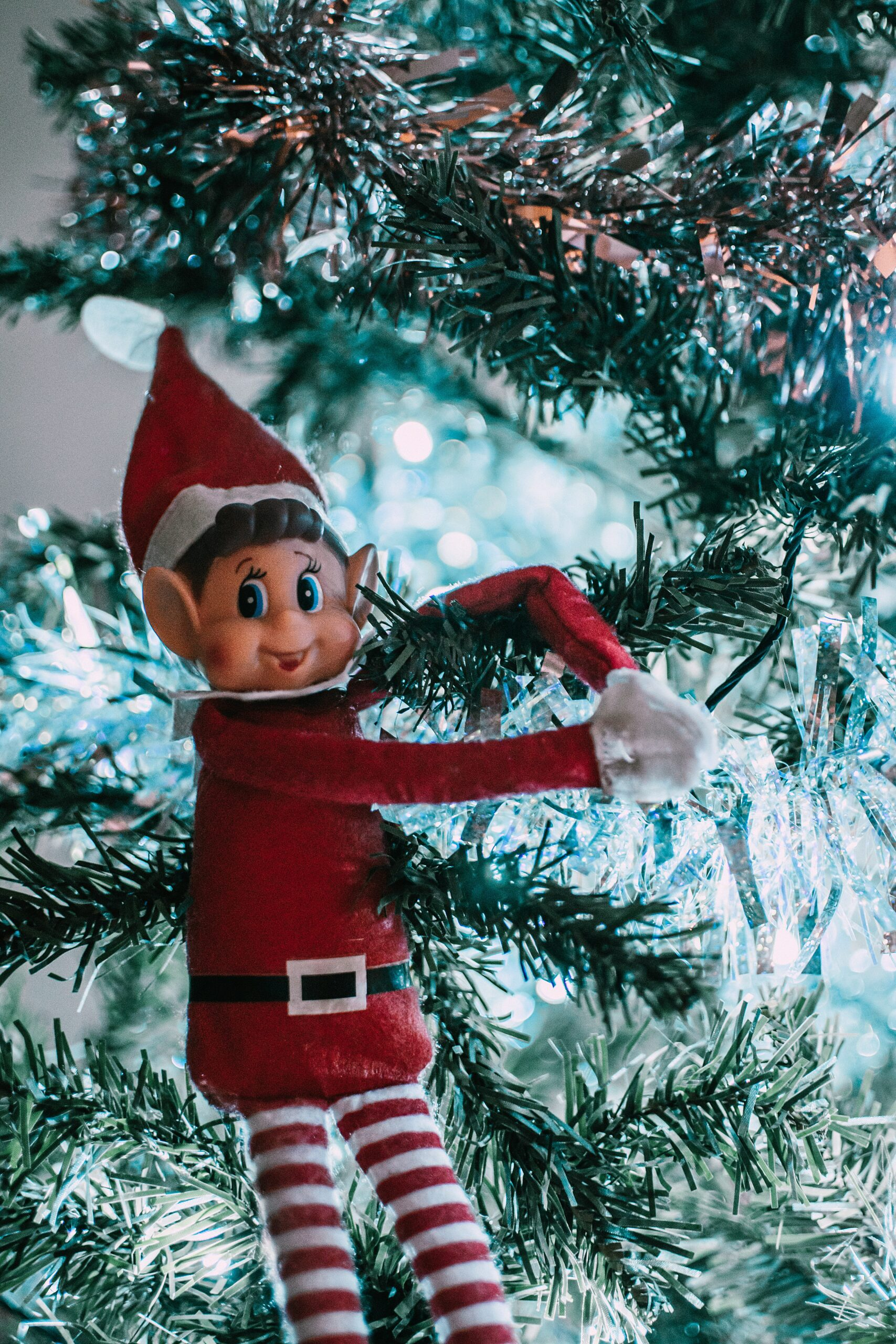 12 Days of Christmas: Day #2, What's Your Elfname
