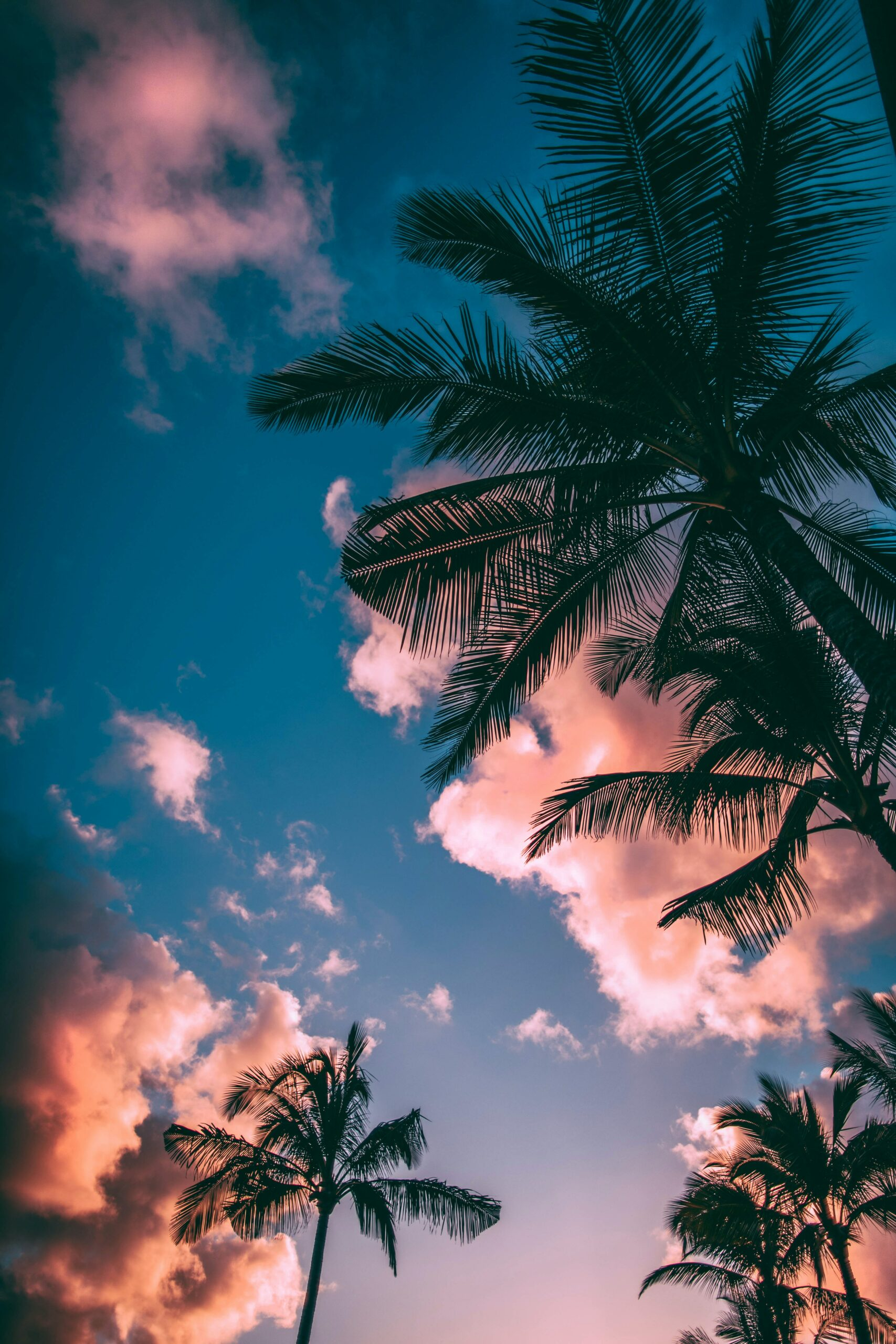 My Ultimate Summer Playlist … 2021