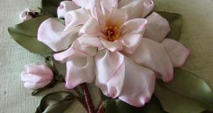 ribbon-rose