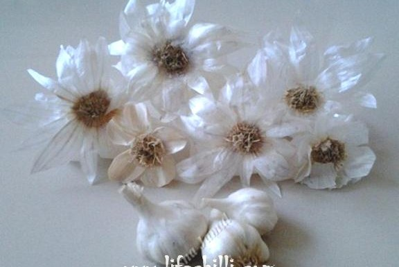 how-to-make-dry-flower