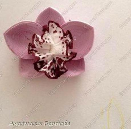 paper-quilling-orchid-flower