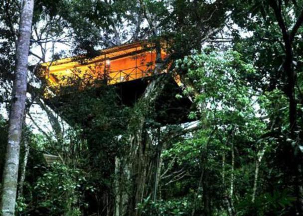 tree-house-resorts