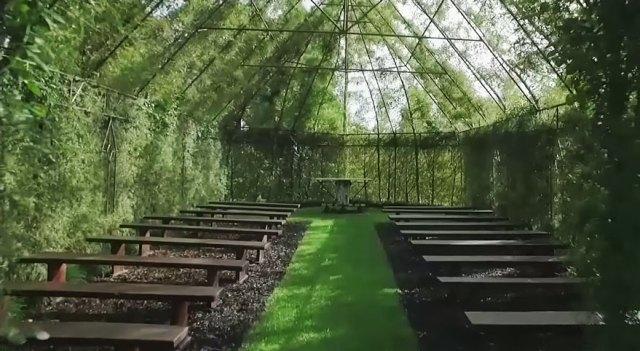 Tree Church 4