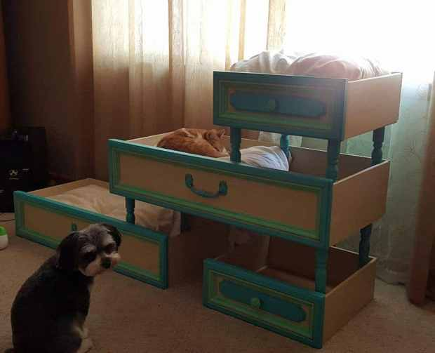 16 fabulous ways to repurpose old dresser drawers life for Make a cat bed out of a box