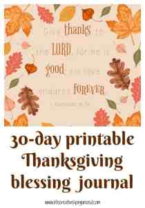 Thanksgiving is almost here. Here's a 30-day printable Thanksgiving blessing journal for you since Thanksgiving is all about giving thanks for our blessings.