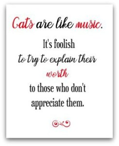 Cat quote - red and black