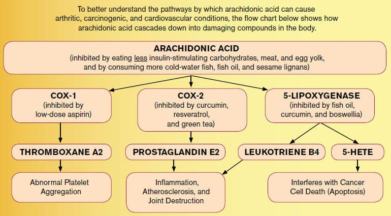 Arachidonic-Acid