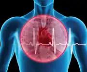 Heart Health - An Overview