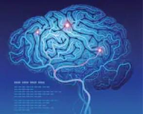 How Taurine Enhances Brain Function