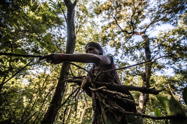 Women, guardians of biodiversity in Nepal. The photos in a ...