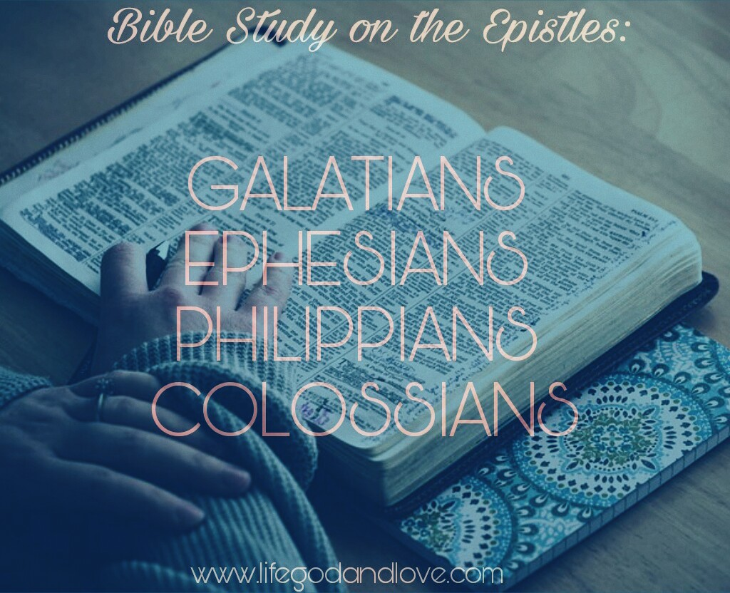 Next Bible Study on WhatsApp!