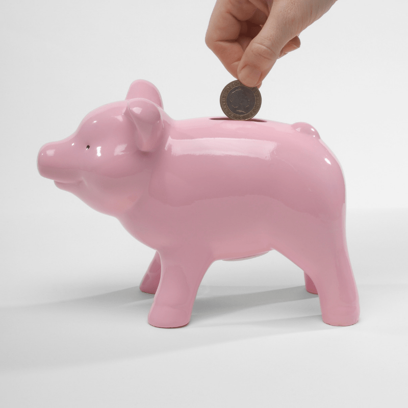 Piggy bank with person putting a coin in it