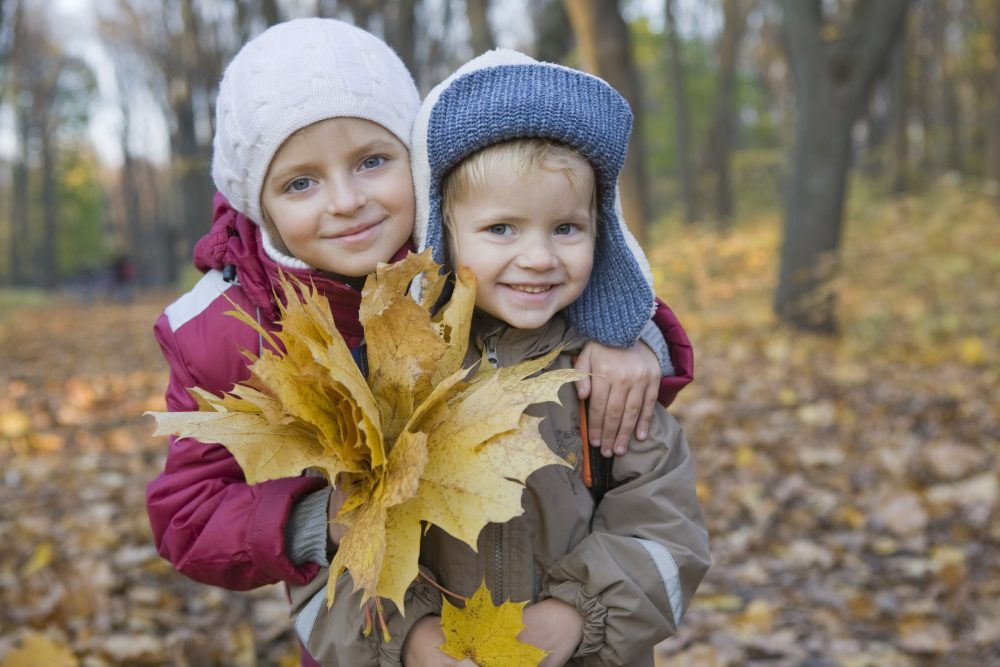 Brother and sister holding leaves in park, portrait