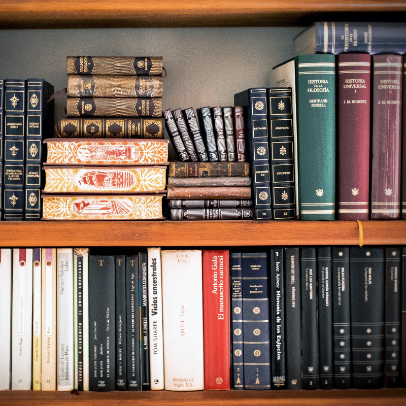 Selection of text books on a shelf