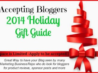 Bloggers 2014 Holiday Gift Guide
