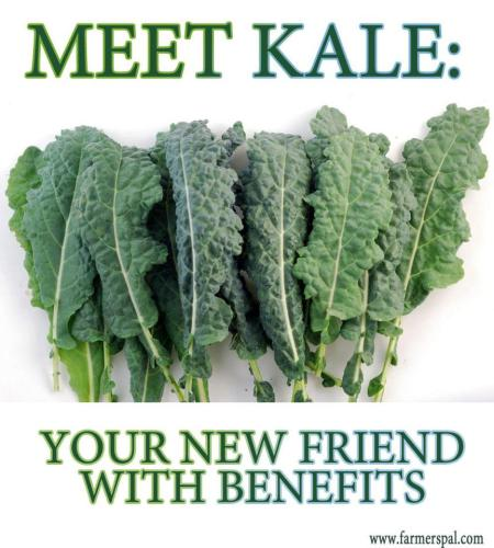 Meet Kale: Your New Friend with Benefits