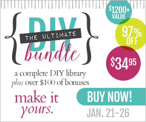 Time's Running Out to Get the Ultimate DIY Bundle