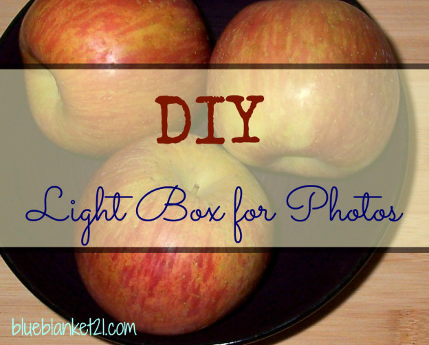 Week 28 Host Favorite - Kim M. choose DIY A Photography Light Box from The Blue Blanket