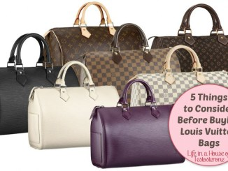 5 Things to Consider Before Buying Louis Vuitton Bags