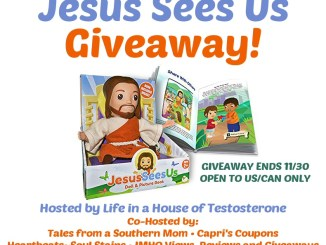 Jesus Sees Us Doll and Book Giveaway from Life in a House of Testosterone