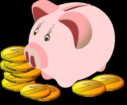 Weekly Savings Plan for 2016
