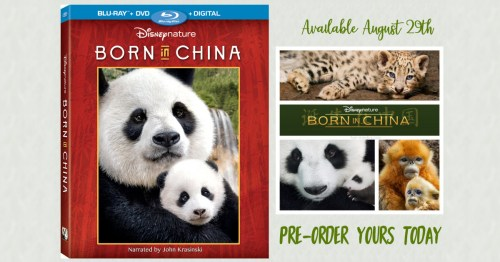 Disneynature's Born in China Available August 29th
