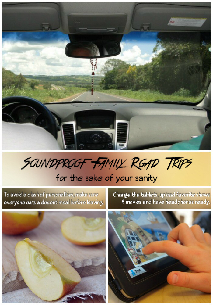 Soundproof Family Road Trips PIN