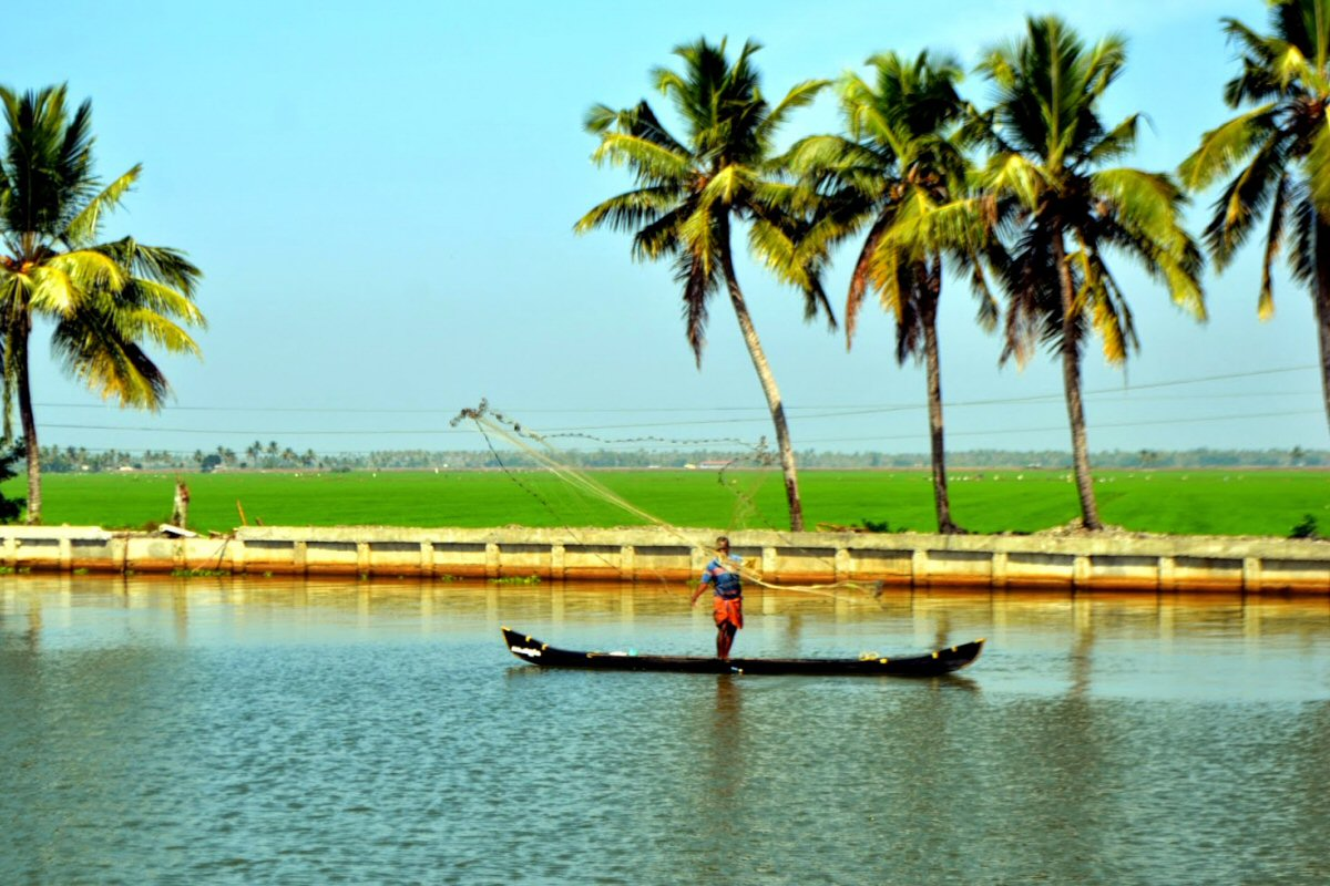 Backwaters of Kuttanad