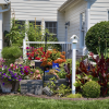 flowers, garden, backyard, birdhouse