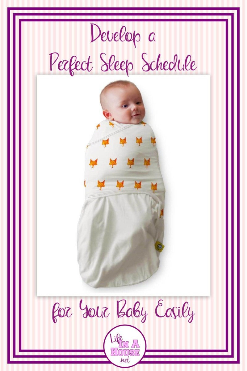 easy sleep schedule for baby with nested bean products
