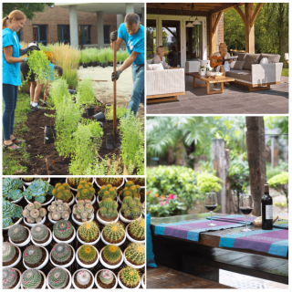 Fast and Easy Ways to Make the Garden Look Great