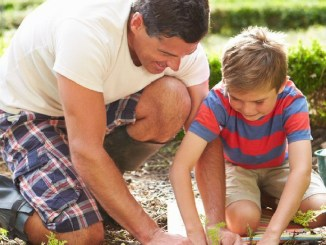 dad and son gardening feature