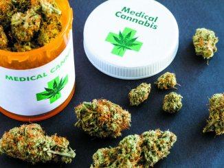 medical marijuana in flower form